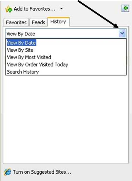 View history by