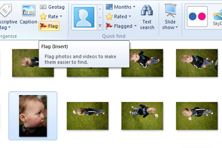 Windows live photo gallery flag