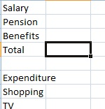 Budget spreadsheet total
